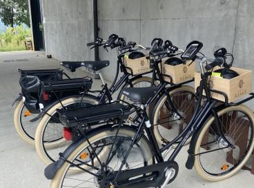 Escapade Nature à Vélo Electrique
