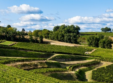 Discover the Bordeaux vineyards with electric bike
