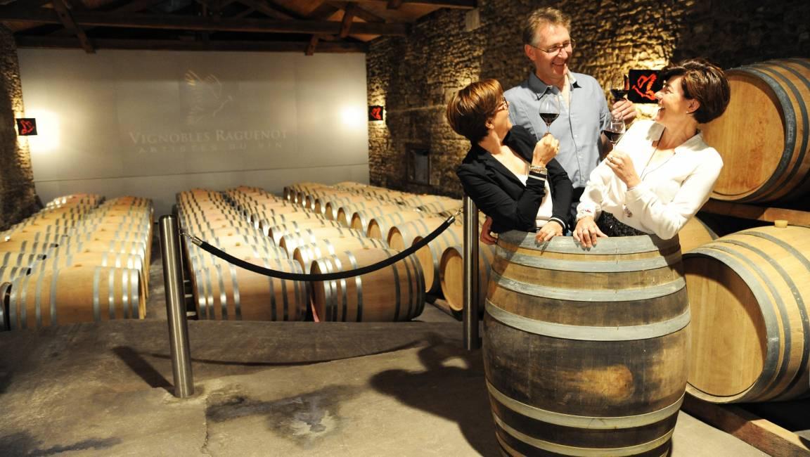 Vignobles Raguenot - Bordeaux Côtes de Blaye - 3